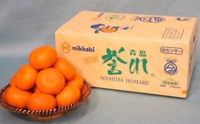【糖度11%以上・熟成】三ケ日みかん「誉れ」5kg 2万8,000円