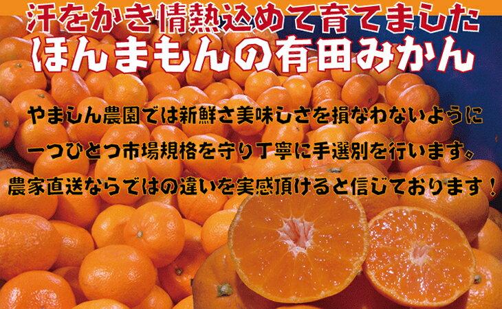 和歌山・有田みかん 7kgx2箱 1万2,000円