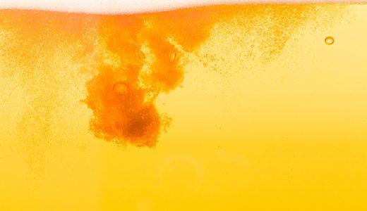 ふるさと納税「ビール」の月間人気返礼品ランキング