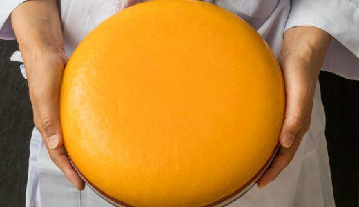 ふるさと納税「チーズ」の人気ランキング!おすすめの「チーズ」定番返礼品をチェック