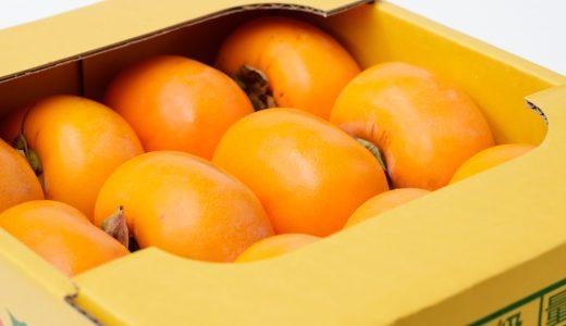 ふるさと納税「キウイ・柿・栗・ブルーベリー等」の人気ランキング!おすすめの「キウイ・柿・栗・ブルーベリー等」定番返礼品をチェック