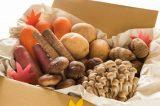 野菜詰め合わせの人気ランキング