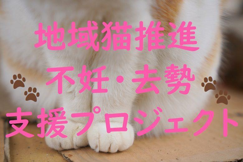 地域猫推進・不妊・去勢支援プロジェクト
