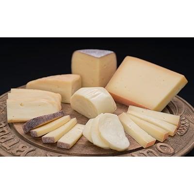 【全国流通前の逸品】北海道酪農王国チーズセット[Su102-A017]