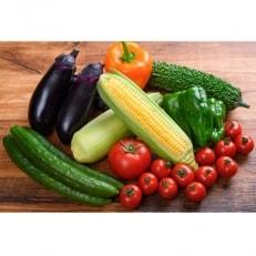 【高知県産】栽培期間中農薬不使用・季節の野菜セット(2~3人用)