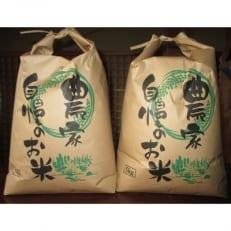 キヌヒカリ(玄米)5kg×2袋