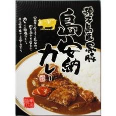 【大平樂】九州食べ比べカレー(5種×2)10個セット