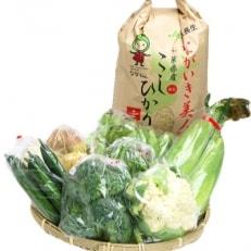 季節の野菜と玄米5kg詰め合せ