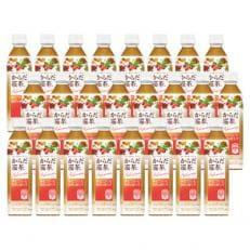 からだ巡茶 Advance (機能性表示食品)(410mlPET×24本) H027