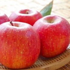 たてしなップル 完熟りんご 【ふじ】