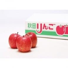 樹上完熟 季節のりんご 5kg