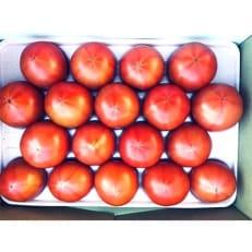こだわりの高糖度トマト 2kg