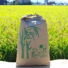 【平成30年産 新米】 玄米さがびより 30kg