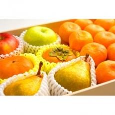 フルーツソムリエが選んだ旬のフルーツ詰合せ