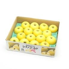 信州高山さわやかリンゴ5kg