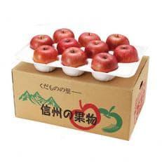 【数量限定】南信州産 サンふじりんご贈答用 10kg