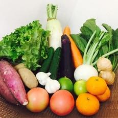 【熊本県産】 旬の地野菜(7~10品)・果物(1~2品)セット