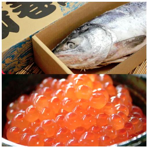 新巻鮭(2kg前後)といくら醤油漬けセット