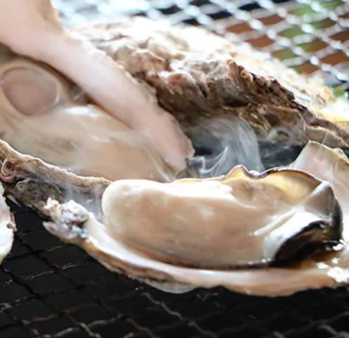 釧路町仙鳳趾産の殻付き牡蠣が25個