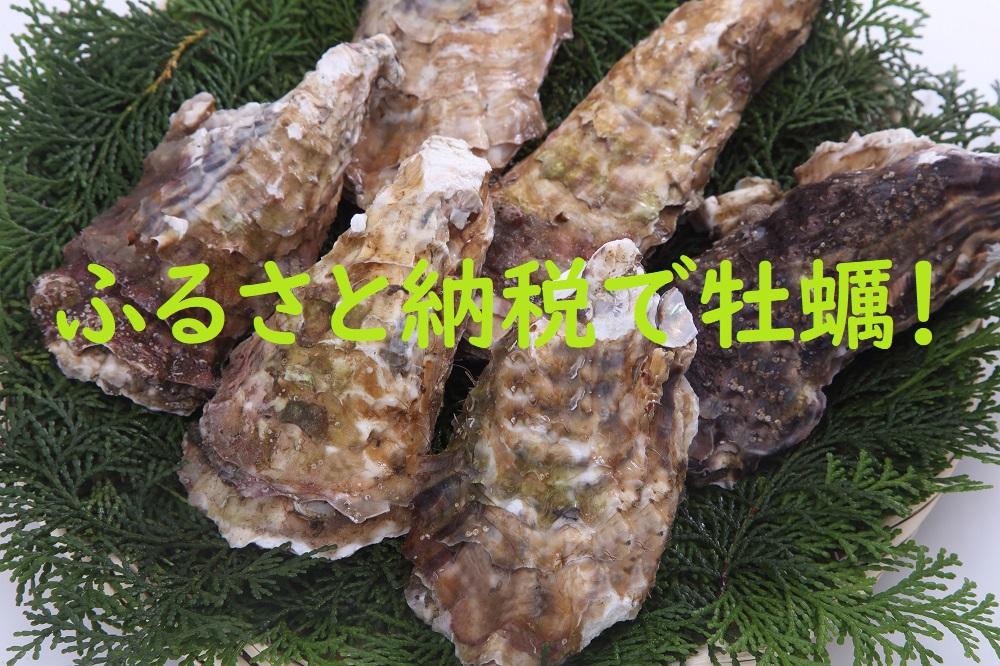 ふるさと納税で牡蠣