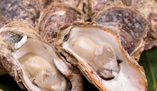 ふるさと納税「牡蠣(カキ)」の人気ランキング!おすすめの「牡蠣(カキ)」定番返礼品をチェック