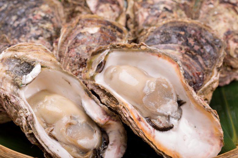 牡蠣(カキ)