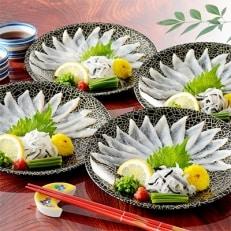 九州冬の味覚 とらふぐ刺身8皿セット