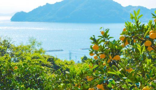 ふるさと納税で瀬戸内海の離島・大崎上島(おおさきかみじま)の魅力的な返礼品をゲット!