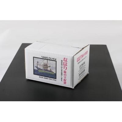 シルバー福BOXセット sat991