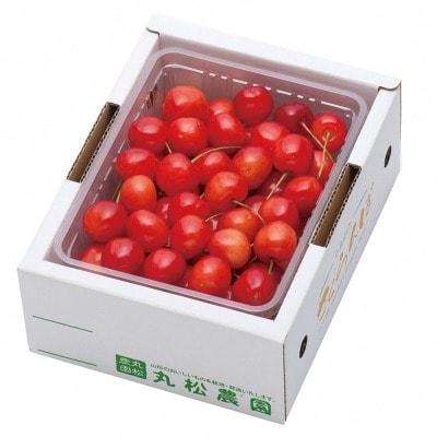さくらんぼ (佐藤錦・秀品・Lサイズ) 500g 010-A02