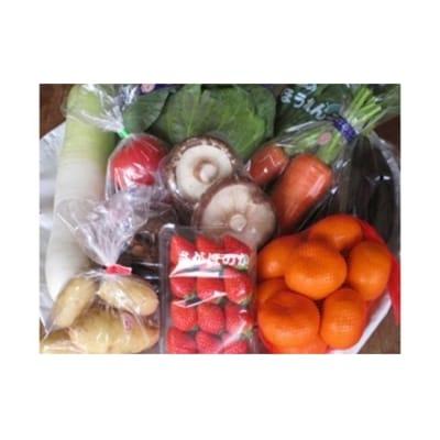 旬の野菜と果物セット