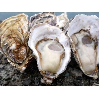多度津白方 殻付活牡蛎カンカン焼セット 3kg (加熱用)【H-1】