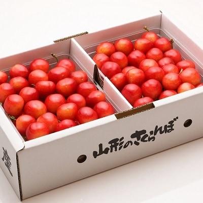 さくらんぼ(佐藤錦と紅秀峰)1kg 食べ比べセット 0103-202