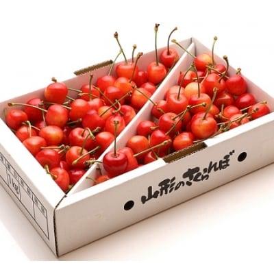 さくらんぼ(佐藤錦)1kg M・Lサイズ 0103-205