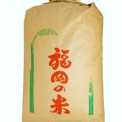 【定期便】1粒からこだわる1等級米 元気つくし 玄米(20kg×3回)