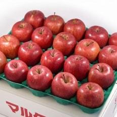【青森県南部地方りんご】サンふじ 中玉10kg