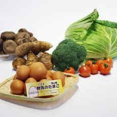 新鮮な八王子産野菜等詰め合わせ