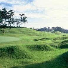 【霞南ゴルフ倶楽部】平日限定 1組 4名様 1Rプレー券