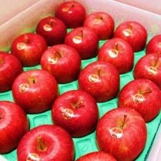 ふじむら農園の盛岡りんご【サンふじ】5kg