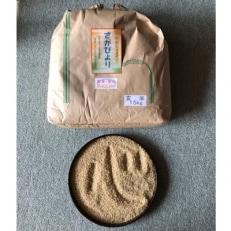 【平成30年産】さがびより(玄米)15kg