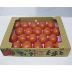 さんさんとまと(大玉トマト)約4kg(18~24玉入り)1箱