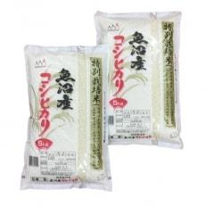 諸長 魚沼産コシヒカリ特別栽培米10kg(5kg×2袋)