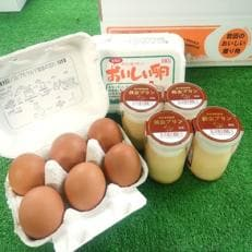 岩田のおいしい卵と黄金プリンのセット