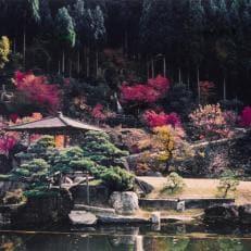 「ツーリズムの宿・若槻屋」宿泊、回遊式庭園「石照庭園」入園ペアチケット