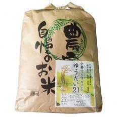 塩谷産米『ゆうだい21』 無洗米10kg