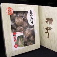 九州産どんこ椎茸 化粧箱入り (GKG-50)