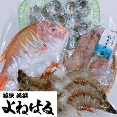 海鮮BBQセット【3名様分】