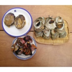 【伊豆の恵み3種 Cセット】ボイルサザエ・味噌汁用カット伊勢海老・あわび味噌漬