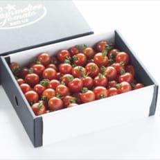 塩トマトのようなミニトマト「ソムリエミニトマト3kg」