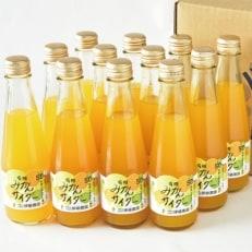 和歌山県産ストレート果汁50%入り 有田みかんサイダー